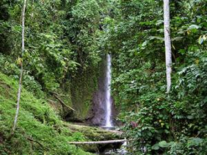 Waterfalls Tours Packages